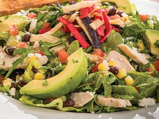Sun & Fork Salads